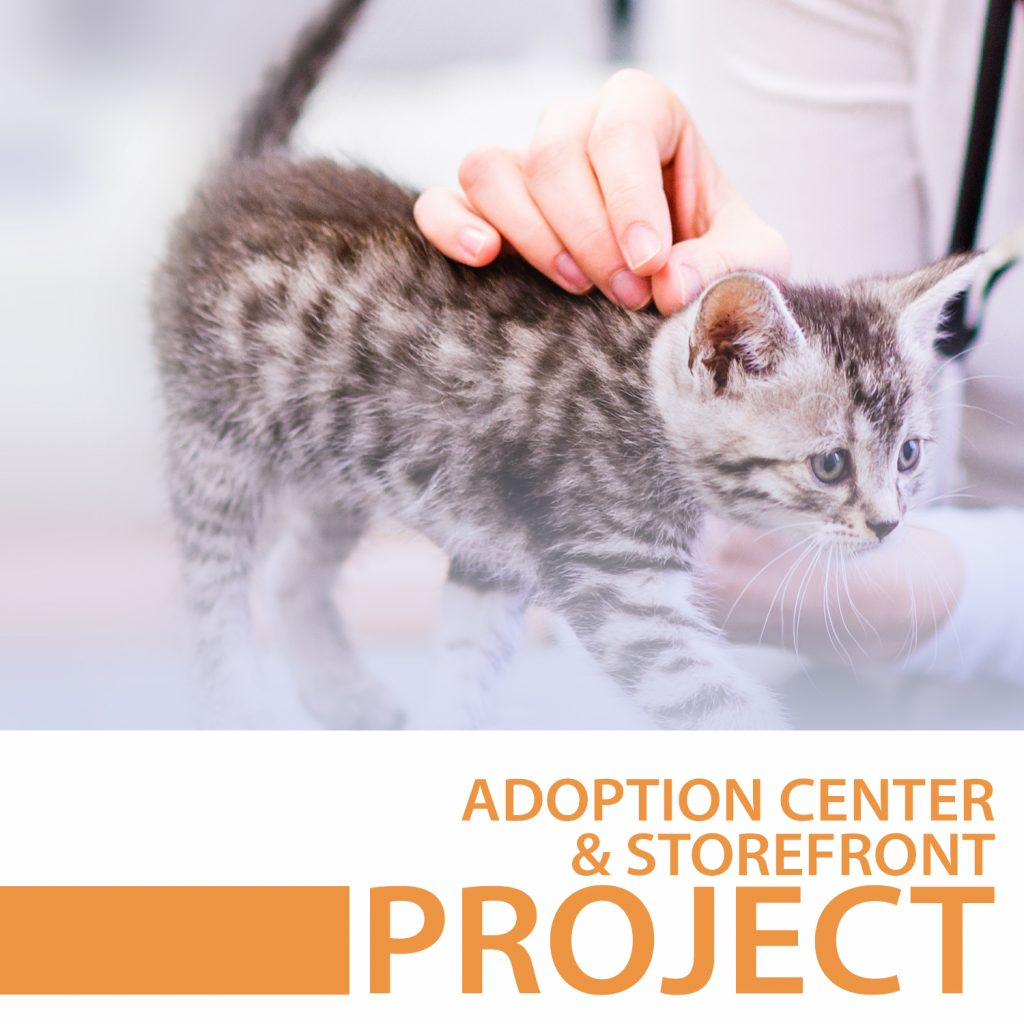 adoption center and storefront project case study icon